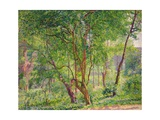 Panshanger Park Giclee Print by Spencer Frederick Gore
