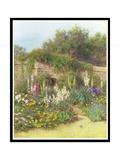 In Munstead Wood Garden, Gertrude Jekyll's Garden, Godalming, Surrey Giclee Print by Helen Allingham