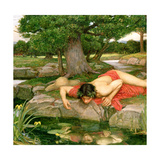 Echo and Narcissus, 1903 (Detail) Giclee Print by John William Waterhouse
