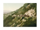Old Trail to Mount Wilson, Pasadena, California, 1900 Giclee Print by  American School