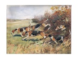 Following the Scent, Illustration from 'Hounds' Giclee Print by Thomas Ivester Lloyd