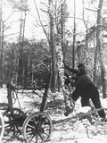 A Couple Cutting Down a Tree for Firewood, 21st February 1947 Photographic Print by  German photographer
