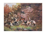 Through the Undergrowth, Illustration from 'Hounds' Giclee Print by Thomas Ivester Lloyd
