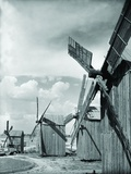 Windmills in Dobuja, Romania Photographic Print
