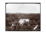 View of Central Park from the Plaza Hotel, 5th Avenue and 59th Street, New York, 1907 Giclee Print by  Byron Company