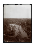 View of Central Park from the 4th Floor of the Plaza Hotel, 5th Avenue and 59th Street, 1907 Giclee Print by  Byron Company