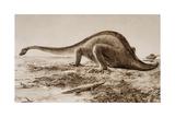 Brachiosaurus Giclee Print by Amedee Forestier
