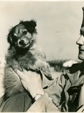 German Soldier with Dog, 1914-18 Photographic Print by  German photographer