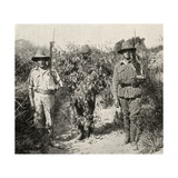 A Turkish Sniper, Disguised as a Bush, in Custody after Being Captured by Anzac Troops, from 'The… Giclee Print by  English Photographer