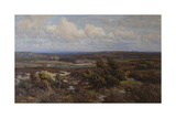 New Forest Giclee Print by Frederik Golden Short