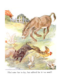 'Had Some Fun To-Day, But Suffered for it - as Usual!', Illustration from 'The Naughty Neddy… Gicleetryck av Anne Anderson
