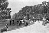 General View of Bushey Park, Illustration from 'The King', May 25th 1901 Photographic Print by  English Photographer