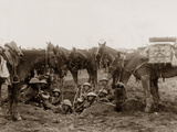 Cavalrymen Resting in a Shell Hole Photographic Print by  English Photographer