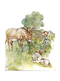 'Had a Talk to Ponto Who Came to My Field with a Bone', Illustration from 'The Naughty Neddy… Giclee Print by Anne Anderson