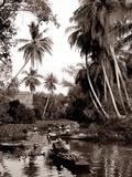 Damnuan Saduak Floating Market Photographic Print