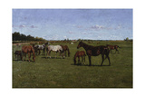 Mares and Foals, 1917 Giclee Print by Georg Koch