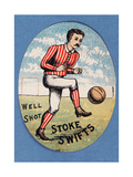 Well Shot Stoke Swifts Giclee Print by  English School
