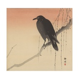 Black Crow on a Willow Branch, 1905 Giclee Print by Seiko Okuhara