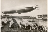 "The Passenger Zeppelin LZ10, ""Schwaben"" in Flight, 1911 Photographic Print by  German photographer"
