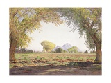The Salt River Valley Gicleetryck av Gunnar Widforss