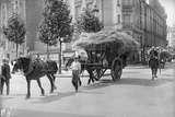 Requisitioning Wheat and Straw for the Army, Paris, 1914 Photographic Print by Jacques Moreau