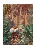Illustration for Robinson Crusoe Giclee Print by Howard Davie