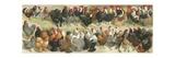 Fowl Impression giclée par Alexander Francis Lydon