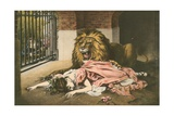 The Lion's Bride Giclee Print by Gabriel Max