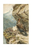 Children of the Mountain Giclee Print by Robert Morley