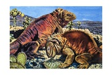 Iguanas on the Galapagos Islands Giclee Print by Harry Green