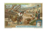 Transport of Figs at Marseille Giclee Print by  European School