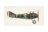 Spad S XIII Giclee Print by  English School