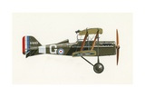 Albatros C III Giclee Print by  English School