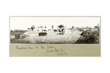 Threshing Corn at Beni Selah, July 1917 Giclee Print by Capt. Arthur Rhodes