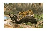 Jaguar Killing Tapir Giclee Print by Wilhelm Kuhnert
