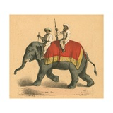 Indians on an Elephant Giclee Print by  English School