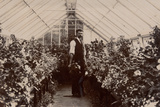 Gardener in a Greenhouse, 1900 Lámina fotográfica por  English Photographer