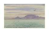 Table Mountain, Cape Town, 4 Oct, 1901 Giclee Print by Edward Adrian Wilson