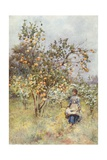 Lemon-Trees: Spring Giclee Print by Alberto Pisa