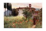 Convent Garden of San Cosimato, Vicovaro Giclee Print by Alberto Pisa