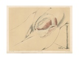 The Abdominal Parietes. Second View of the Abdominal Wall in the Inguinal Region Giclee Print by G. H. Ford