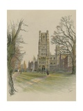 Ely Cathedral Giclee Print by Cecil Aldin