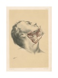 The Head and Neck. The Anatomy of the Submaxillary Region Giclee Print by G. H. Ford