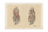The Lower Limb. First and Second Stages in the Examination of the Sole of the Foot Giclee Print by G. H. Ford