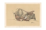 The Pelvis. Side View of the Viscera of the Male Pelvis Giclee Print by G. H. Ford
