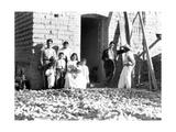 Tina Modotti - Family with Corn, State of Veracruz, Mexico, 1927 Fotografická reprodukce