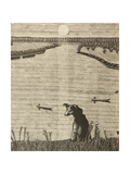 Dog by the Don River, 1980 Giclee Print by Masabikh Akhunov