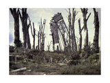 The Gate of the Castle and Trees Damaged by Artillery Fire, Chaulnes, Somme, France, 1917 Giclee Print by Fernand Cuville