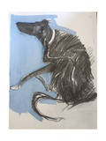 Scratching Dog, 2012 Giclee Print by Sally Muir