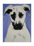Puppy, 2011 Giclee Print by Sally Muir